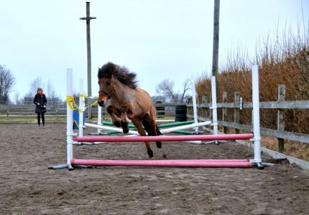 ros hoppar1